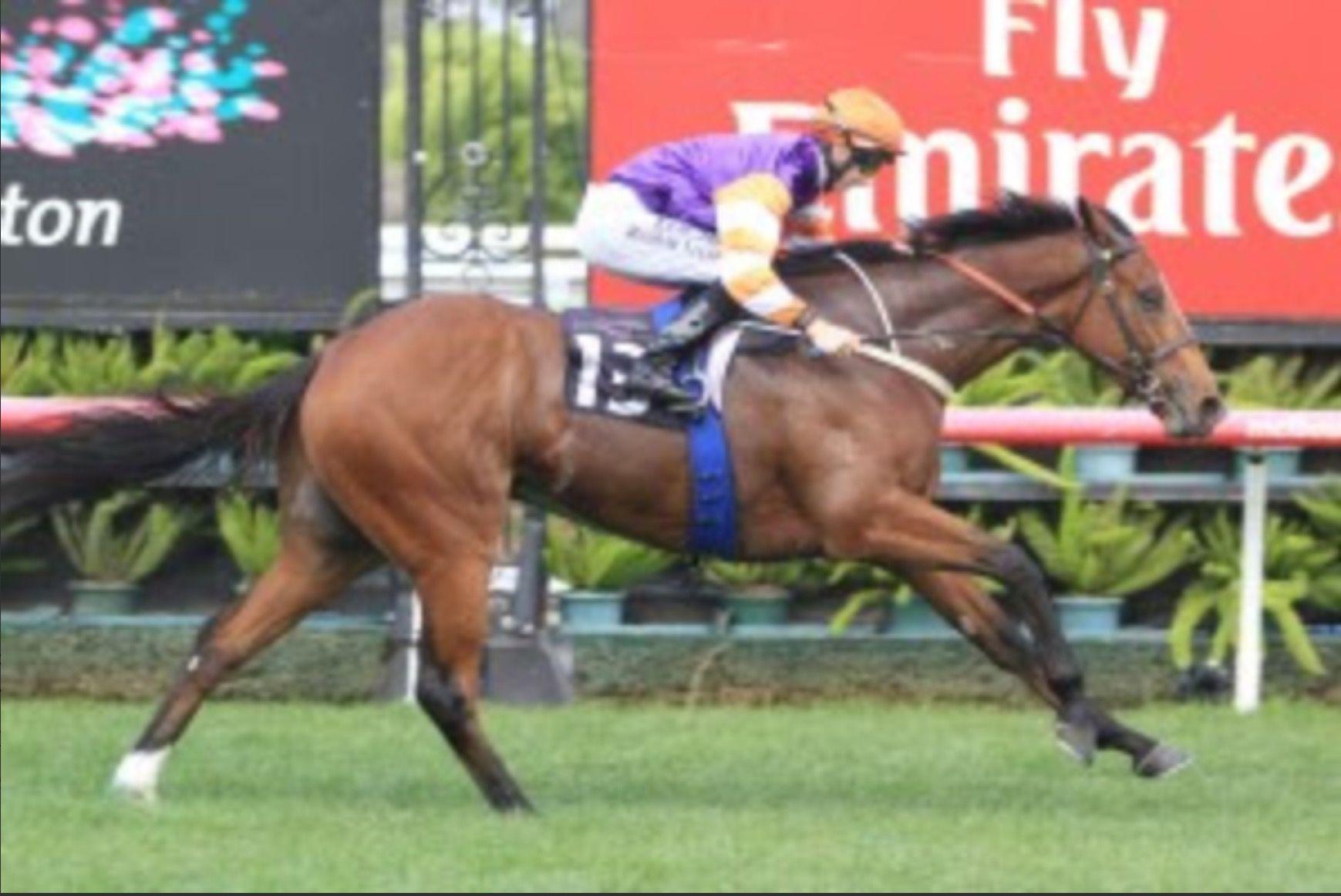 Casino dancer racehorse / Casino gaming online malta
