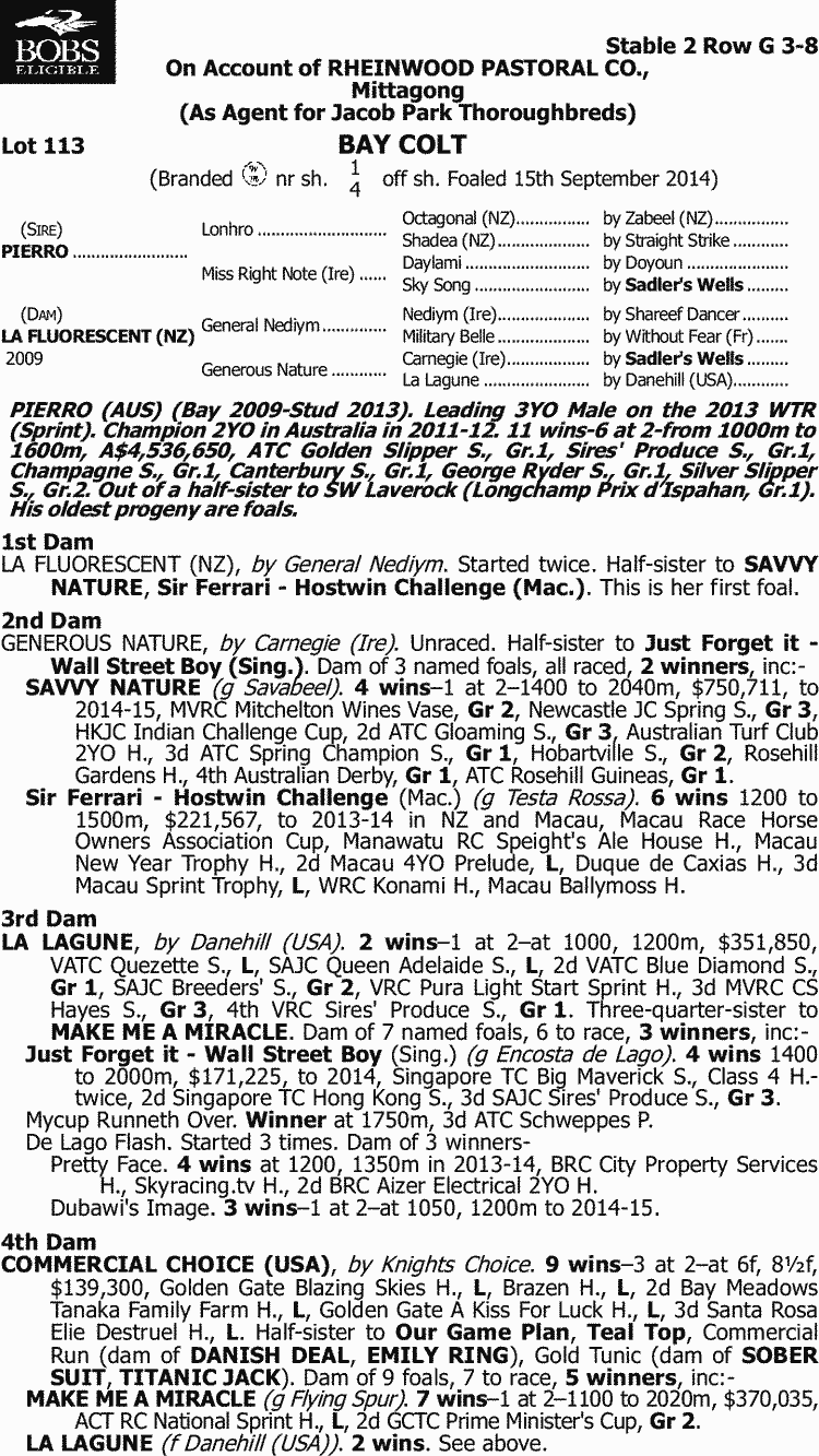 Inglis - 2015 Australian Broodmare and Weanling Sale - Lot