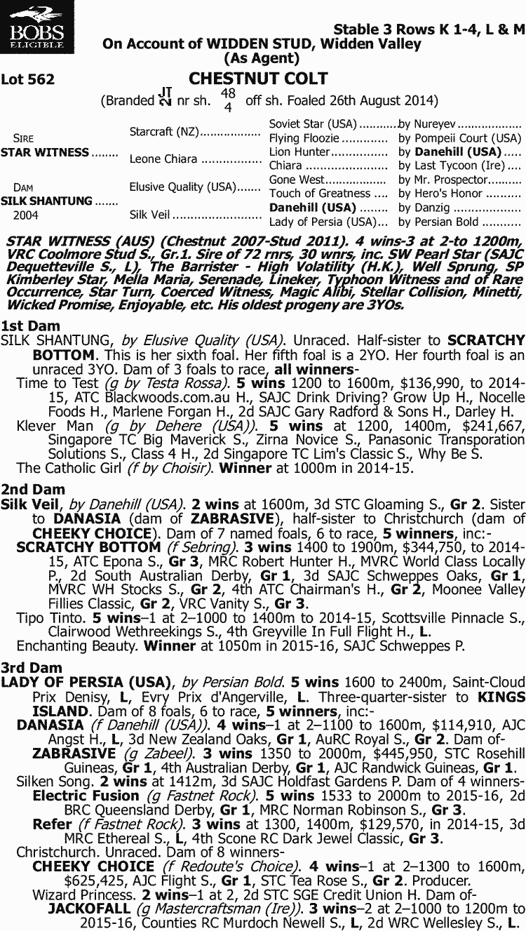 Inglis 2016 Australian Easter Yearling Sale Lot 562 Star Ceres Classic 225 Gr Witness X Silk Shantung