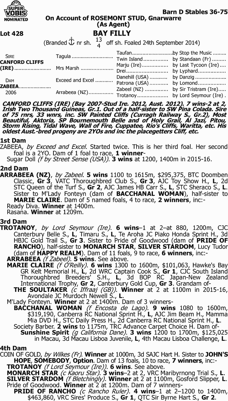 Inglis - 2016 Melbourne Premier Yearling Sale - Lot 428, Canford
