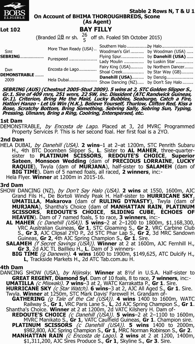 Inglis 2017 classic yearling sale lot 102 sebring x demonstrable pedigree stopboris Choice Image