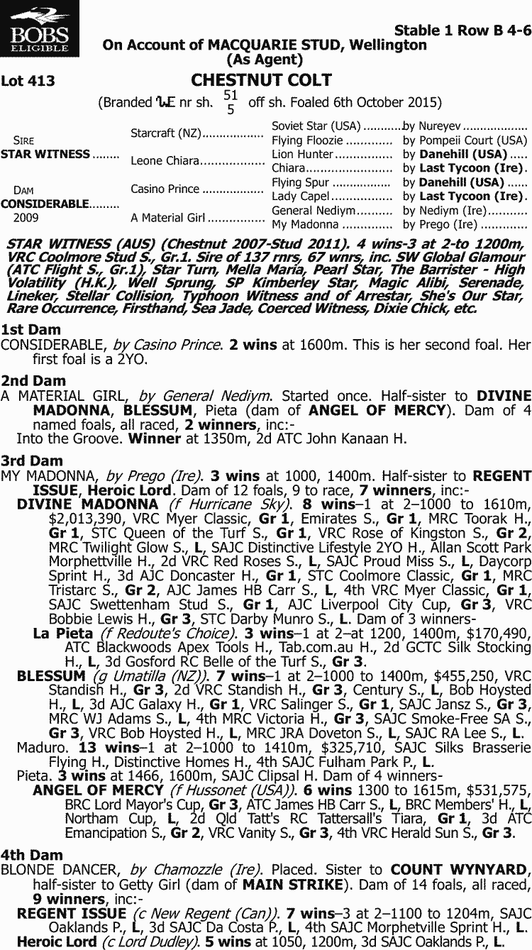 Inglis - 2017 Classic Yearling Sale - Lot 413, Star Witness x