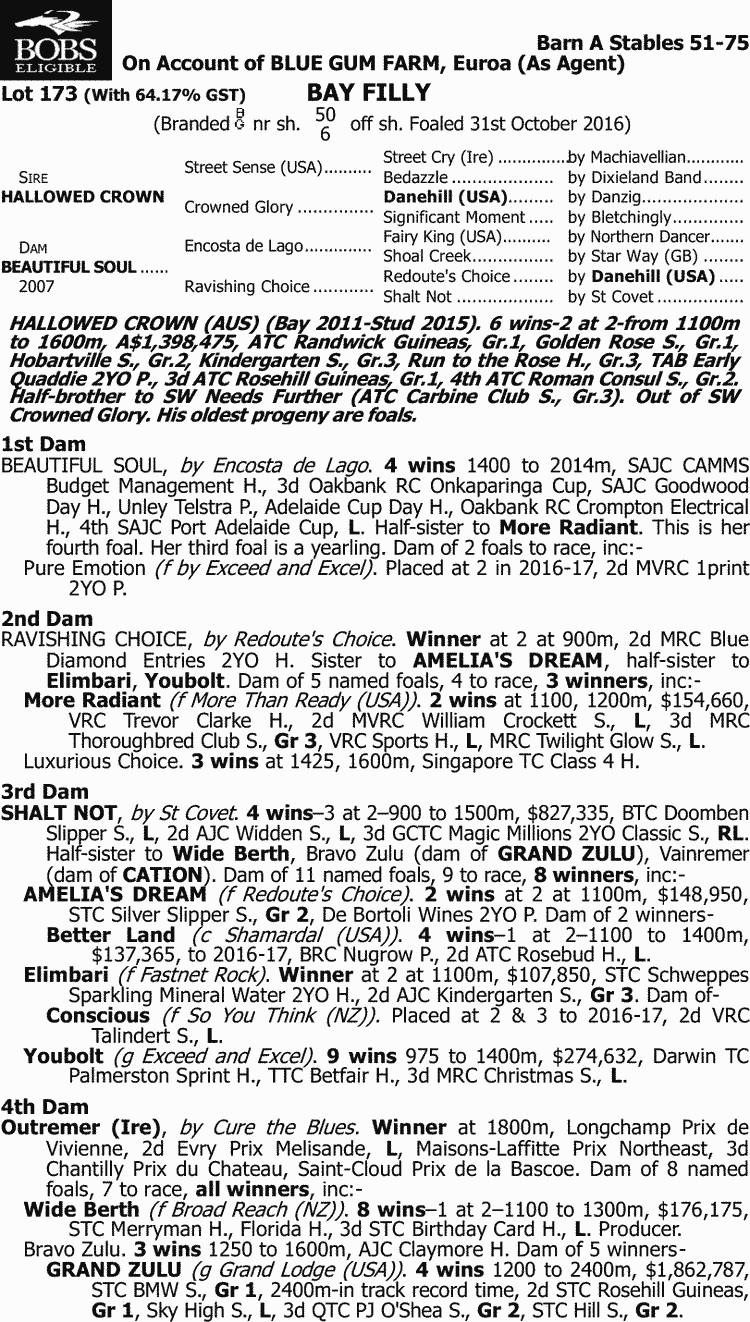 Inglis - 2017 Great Southern Sale - Lot 173, Hallowed Crown