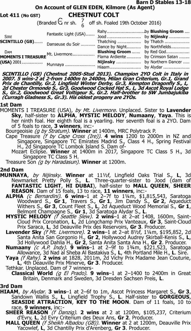 Inglis 2017 Great Southern Sale Lot 411 Scintillo Gb X