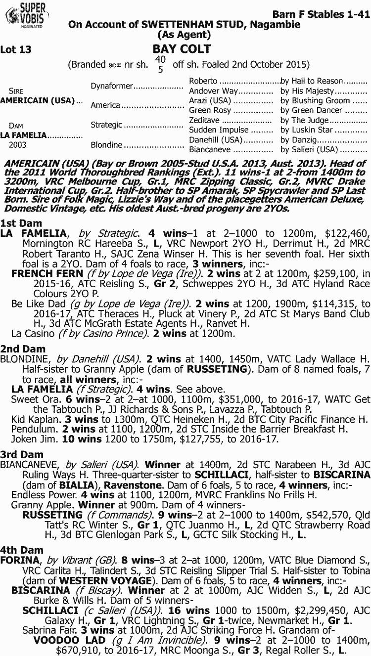 Inglis - 2017 Melbourne Premier Yearling Sale - Search
