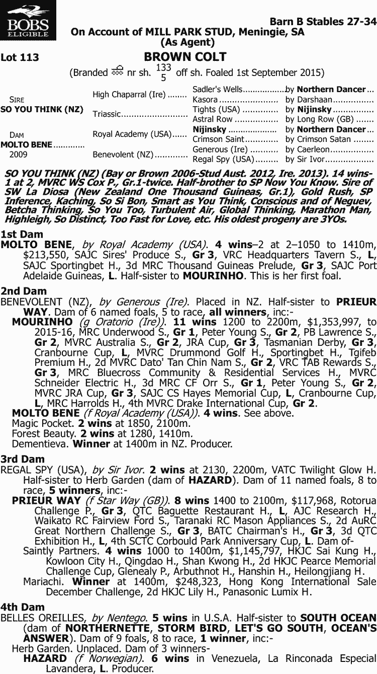 Inglis - 2017 Melbourne Premier Yearling Sale - Lot 113, So You Think (NZ)  x Molto Bene