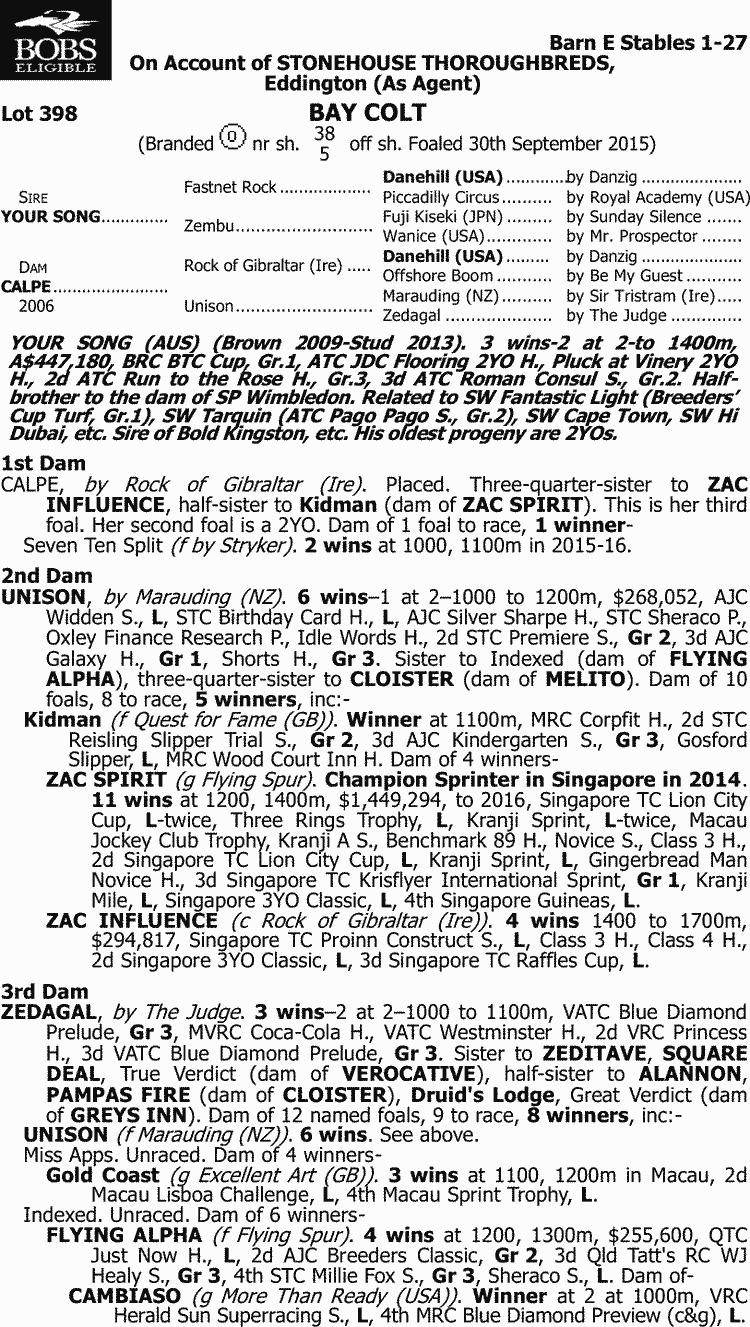 Inglis - 2017 Melbourne Premier Yearling Sale - Lot 398
