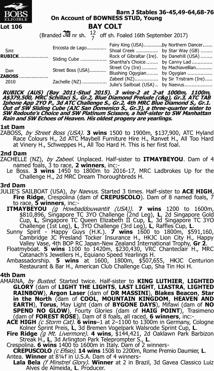 Inglis - 2018 Australian Broodmare and Weanling Sale - Lot 106
