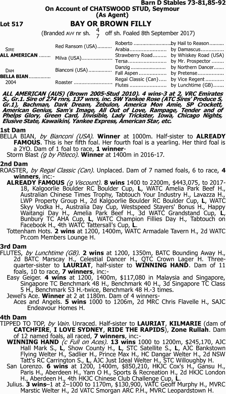 Inglis - 2018 Great Southern Sale - Lot 517, All American x