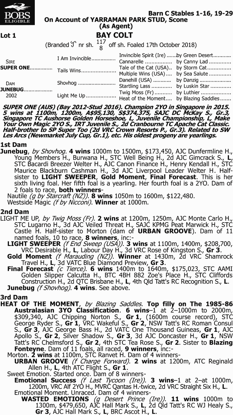 Inglis - 2019 Australian Broodmare and Weanling Sale